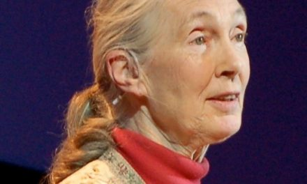 Jane Goodall's Climate Message